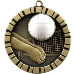 Volleyball 3-D 3-D Series Medal Awards