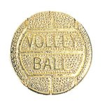 Volleyball Chenille Pin Chenille Lapel Pins