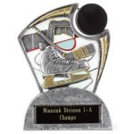 Large Spin Award Hockey Hockey Trophy Awards